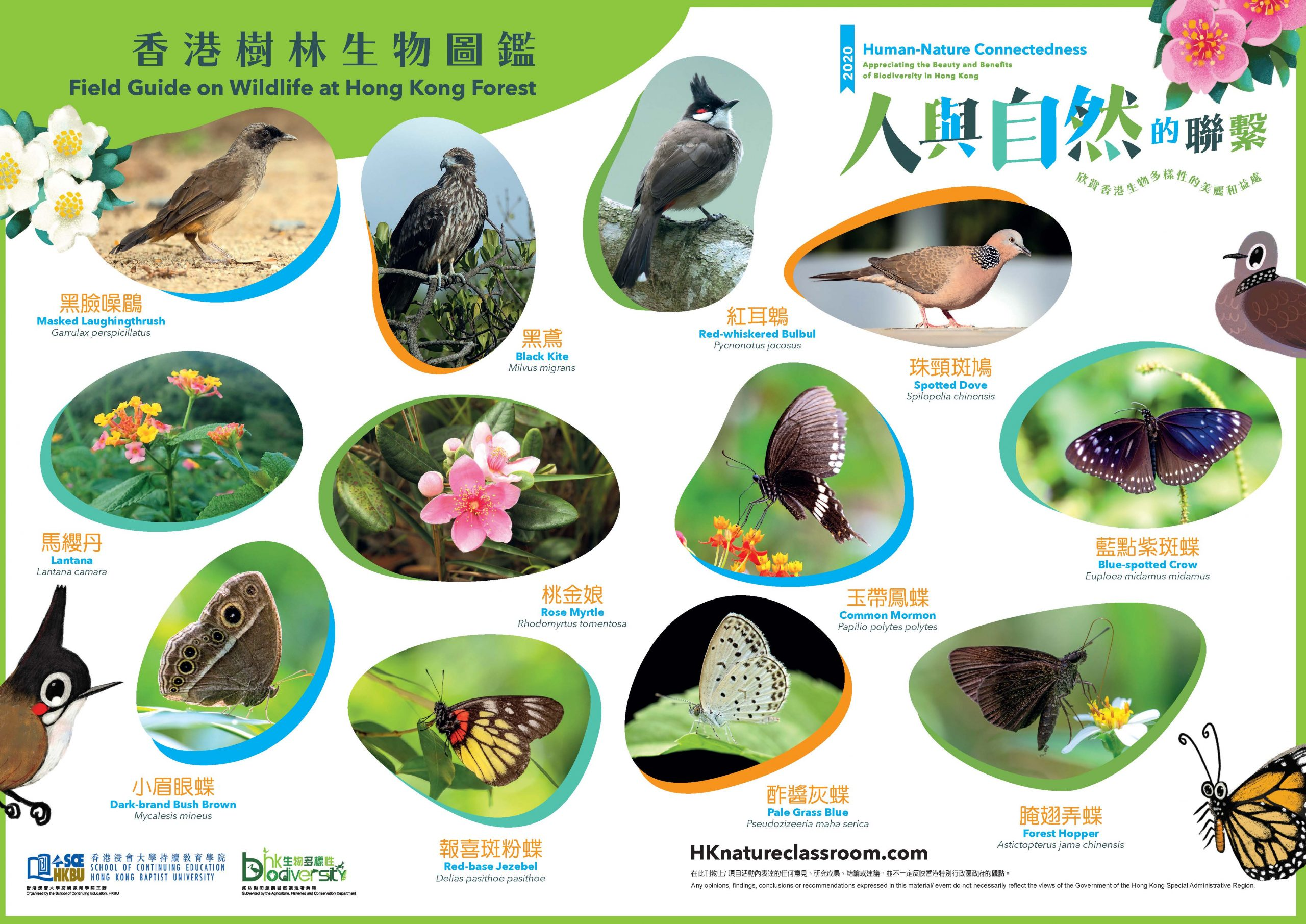 AFCD_A3PhotoGuide_Forest_Page_1