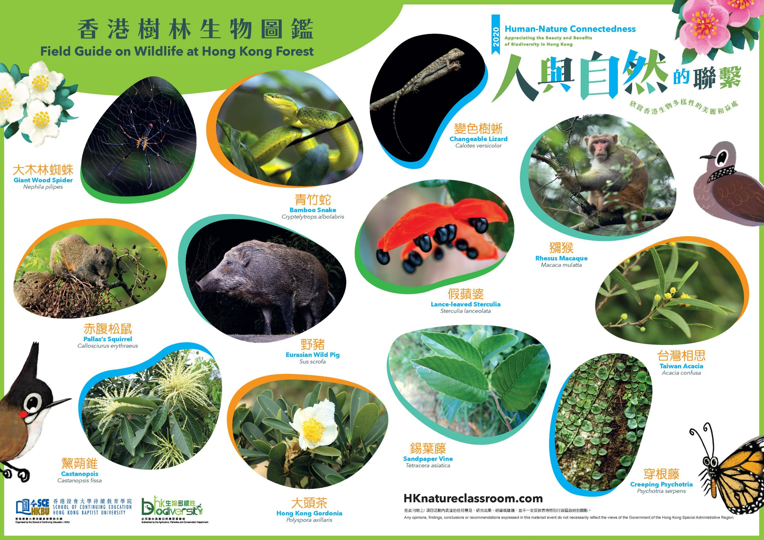 AFCD_A3PhotoGuide_Forest_Page_2