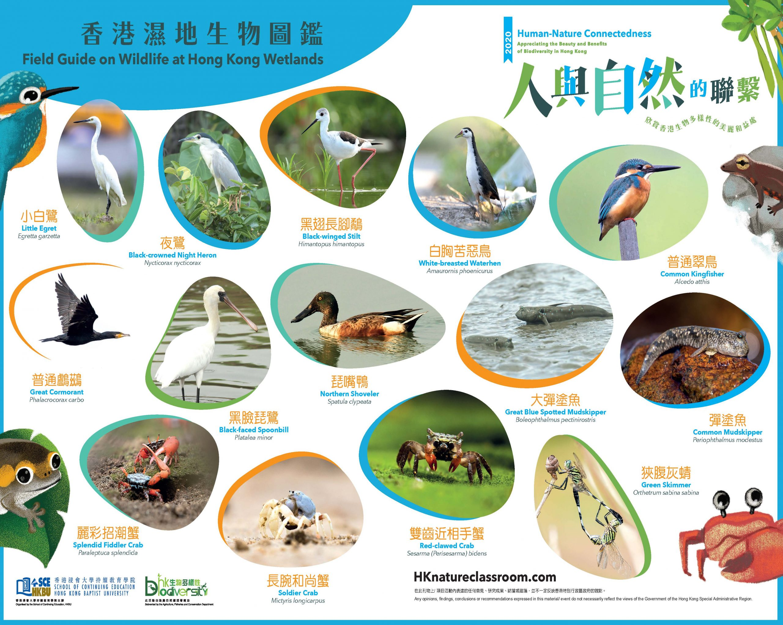 AFCD_A3PhotoGuide_Wetland_Page_1